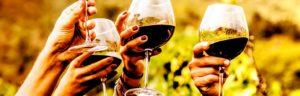 """Winedrops e Sensus Club presentano """"VINO e FITNESS – ESERCIZI A TAVOLA"""""""