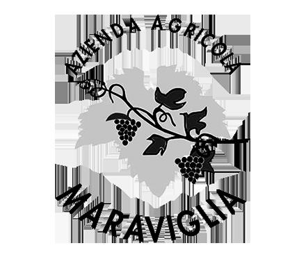 Winedrops - MARAVIGLIA-LOGO